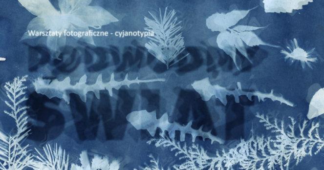 warsztaty fotografia cyjanotypia